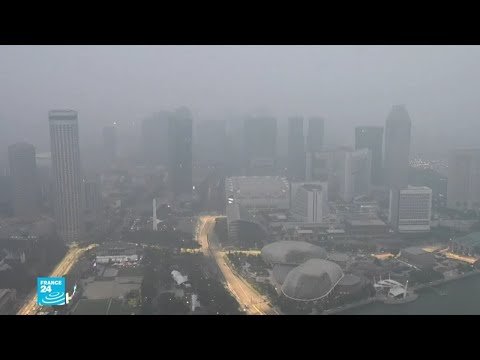 ضباب سام يغطي جنوب شرق آسيا بسبب حرائق الغابات