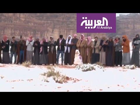 شاهد متنزهون يرقصون الدحية أثناء سقوط الثلوج على شمال السعودية