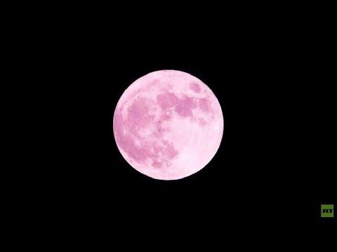 شاهد القمر الوردي العملاق الأكبر والأكثر إشراقًا في 2020