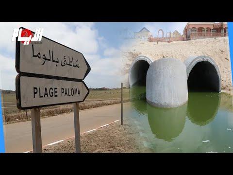 كارثة بيئية تضرب شاطئ بالوما في زمن كورونا