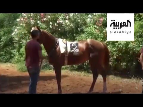 شاهد سباق الخيل في بيروت يعود للعمل بلا حماسة