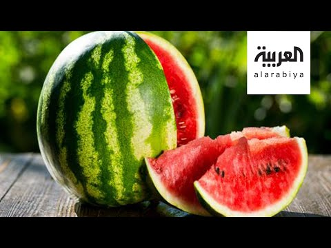 شاهد البطيخ الأحمر خطر على المصابين بأمراض الجهاز الهضمي المزمنة