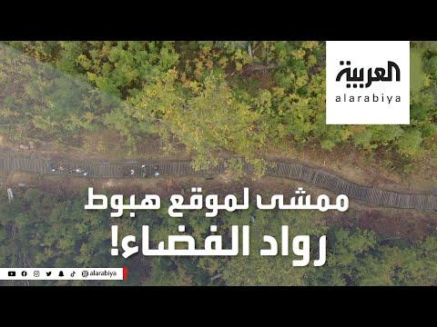 شاهد ممر خشبي في قلب غابة روسية