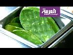 المغرب اليوم  - بالفيديو تعرف على أهم معالم المكسيك